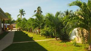 A garden outside panglao moravian apartments