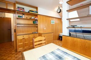 Kuhinja oz. manjša kuhinja v nastanitvi Apartment Alpinea