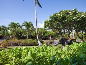 A garden outside Puako Beach Condo 109