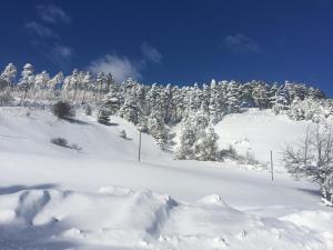 Casetta Accogliente durante l'inverno
