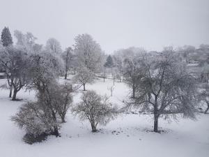 Veronika's Apartment im Winter