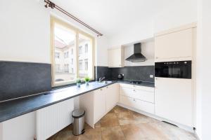 A kitchen or kitchenette at Boris' apartments Charles Bridge