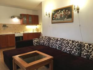 Kuchyň nebo kuchyňský kout v ubytování Apartament Roza v tsentre Heviza