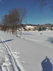 Ubytovani U Poslednich during the winter