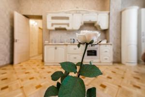 A kitchen or kitchenette at Apartment Dat Exx on the Marjanishvili