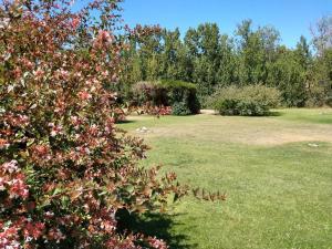 Un jardín fuera de El Ceibo Resort