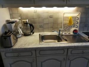 Küche/Küchenzeile in der Unterkunft Apartment Mirabell