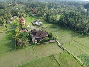 A bird's-eye view of Villa Mangku in Ricefield