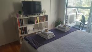 Televizorius ir (arba) pramogų centras apgyvendinimo įstaigoje Tango Cozy Estudio Luminoso WiFi