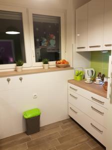 Kuchyňa alebo kuchynka v ubytovaní Apartman Zelengaj