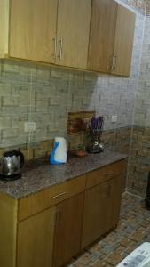 A kitchen or kitchenette at Egyptian House