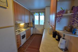 Majoituspaikan Lankila Apartment keittiö tai keittotila