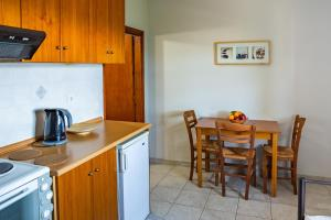 A kitchen or kitchenette at Papanestoras Apartments