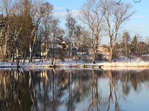 Ferienhaus am Menzerather Weiher im Winter