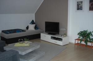 TV/Unterhaltungsangebot in der Unterkunft Appartement Am Goldberg