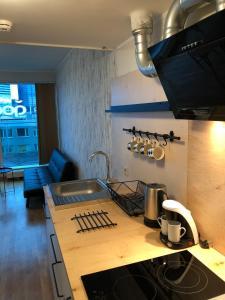 Köök või kööginurk majutusasutuses Triumph Apartment