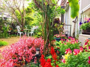 AMAMI-Green-Garden 야외 정원