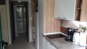 Kuchyň nebo kuchyňský kout v ubytování Apartment Balinovaca