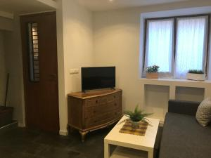 A television and/or entertainment center at Apartment Luzan