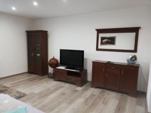 Televízia a/alebo spoločenská miestnosť v ubytovaní Apartman Emka pod Rozsutcom
