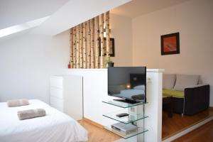 A television and/or entertainment centre at Bright apartment 1 in the heart of Prague