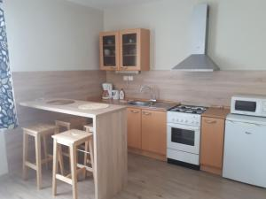 A kitchen or kitchenette at Apartments Lafranconi
