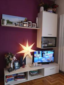 Televízia a/alebo spoločenská miestnosť v ubytovaní Studio apartman Nina