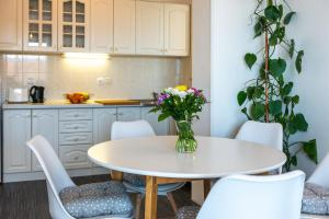 A kitchen or kitchenette at Apartment Jele