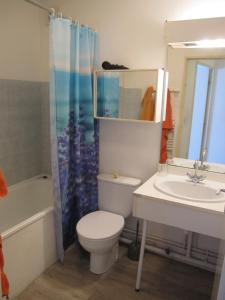 A bathroom at 1 Room Apartment Toulouse Blagnac