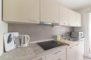 Kuhinja oz. manjša kuhinja v nastanitvi Apartma Bled