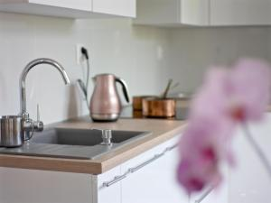 Kuchyňa alebo kuchynka v ubytovaní Emily Apartment