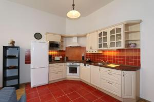 Kuchyň nebo kuchyňský kout v ubytování Vinohrady Varsavska Apartments