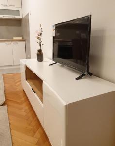 Telewizja i/lub zestaw kina domowego w obiekcie Lovely private flat+FREE breakfast+FREE parking