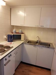 Küche/Küchenzeile in der Unterkunft Apartment im SI Centrum
