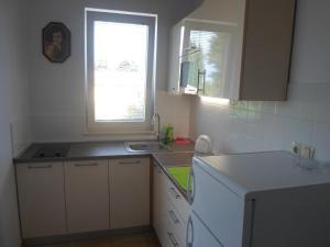Küche/Küchenzeile in der Unterkunft Apartments Golić
