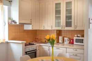 Kuchyň nebo kuchyňský kout v ubytování Apartment Dinka