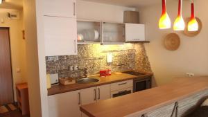 Virtuvė arba virtuvėlė apgyvendinimo įstaigoje Pušynas Apartments