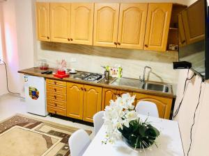 A kitchen or kitchenette at Modern & Spacious 2 Bedroom in the center of Tirana