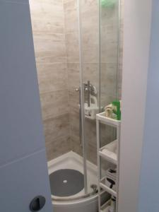 Kúpeľňa v ubytovaní STUDIO APARTMAN OZALJSKA 96