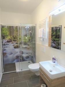 حمام في Hotel Dachsteinresort
