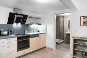 A kitchen or kitchenette at Apartments Golden Roof by Penz