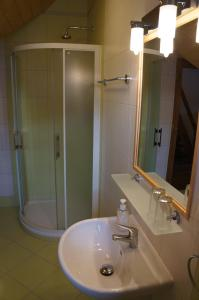 Koupelna v ubytování Roubenka Deštné