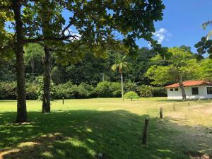 Um jardim em Casa Sophia Brasil