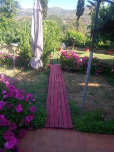 Vonkajšia záhrada v ubytovaní Guesthouse Dramoundana
