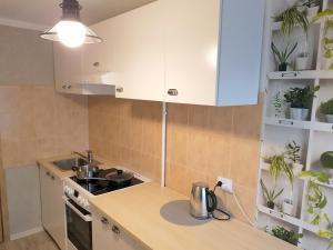 Virtuve vai virtuves aprīkojums naktsmītnē ĶISENS apartamenti