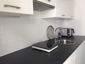 Een keuken of kitchenette bij Parkstudio Zeist