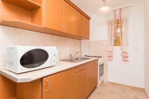 Kuchyň nebo kuchyňský kout v ubytování Kámán Pince
