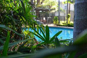 The swimming pool at or near Forest Lodge Apartments