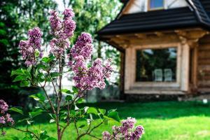 Ogród w obiekcie Domki i Pokoje Gościnne Na Wyskówkach
