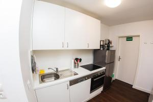 A kitchen or kitchenette at St Pauli CITY Apartment
